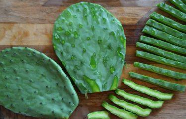 Groentestoofpot Met Kikkererwten En Cactus 375×241