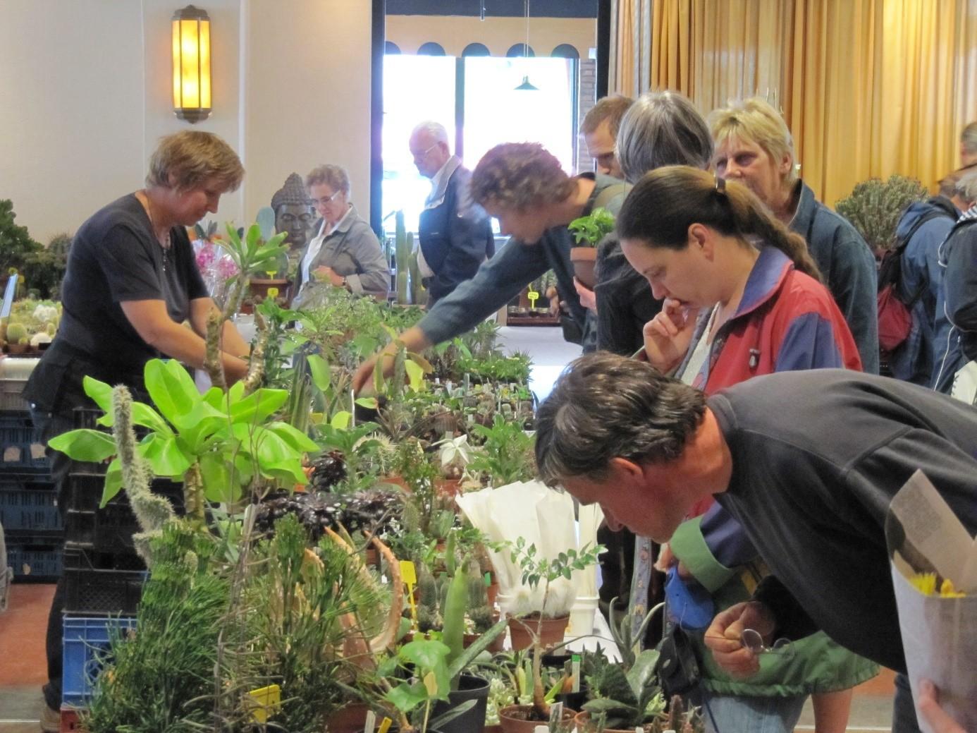 Bijzondere Plantenmarkt Op 19 Juni In Nijmegen