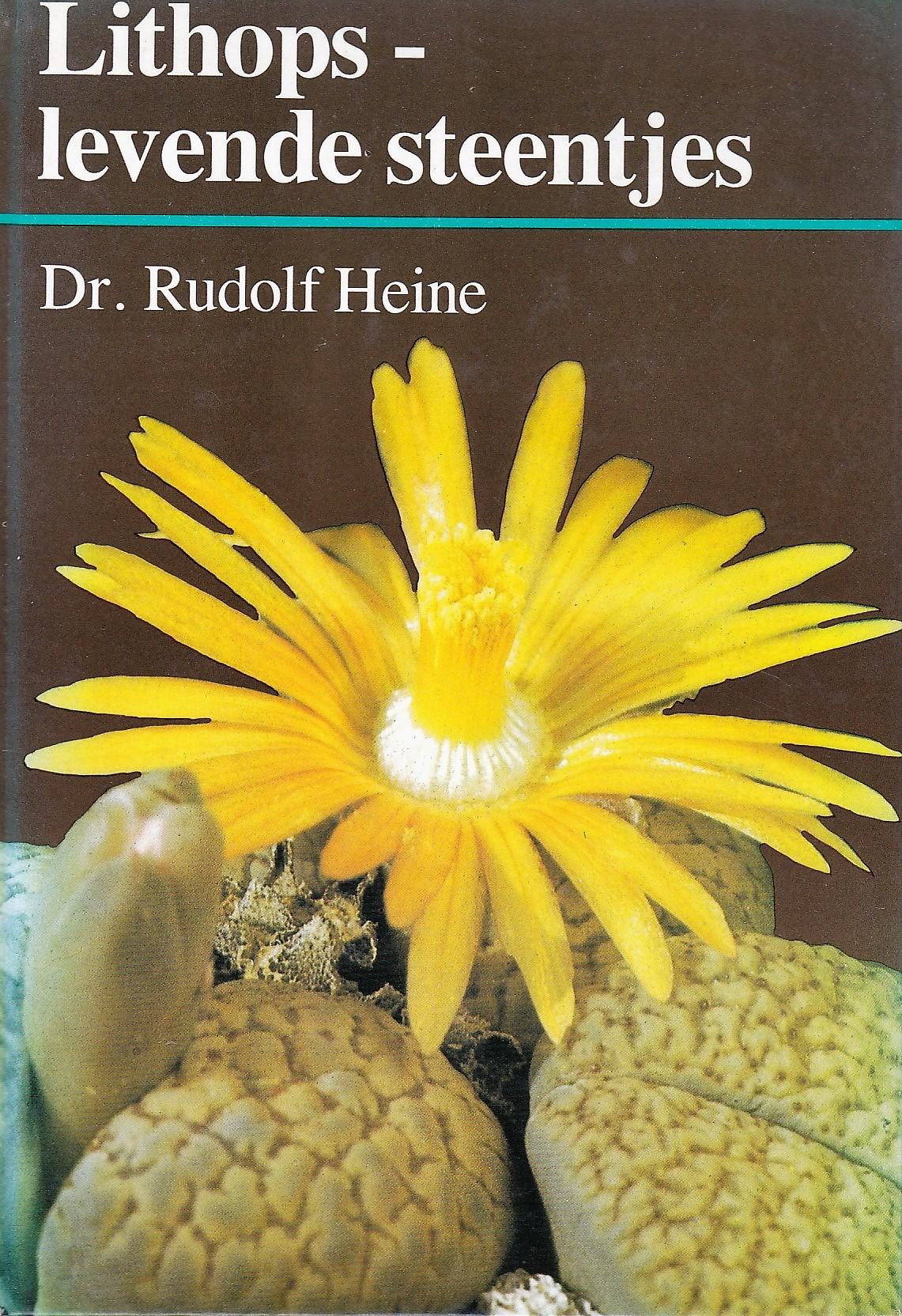 Rudolph Heine