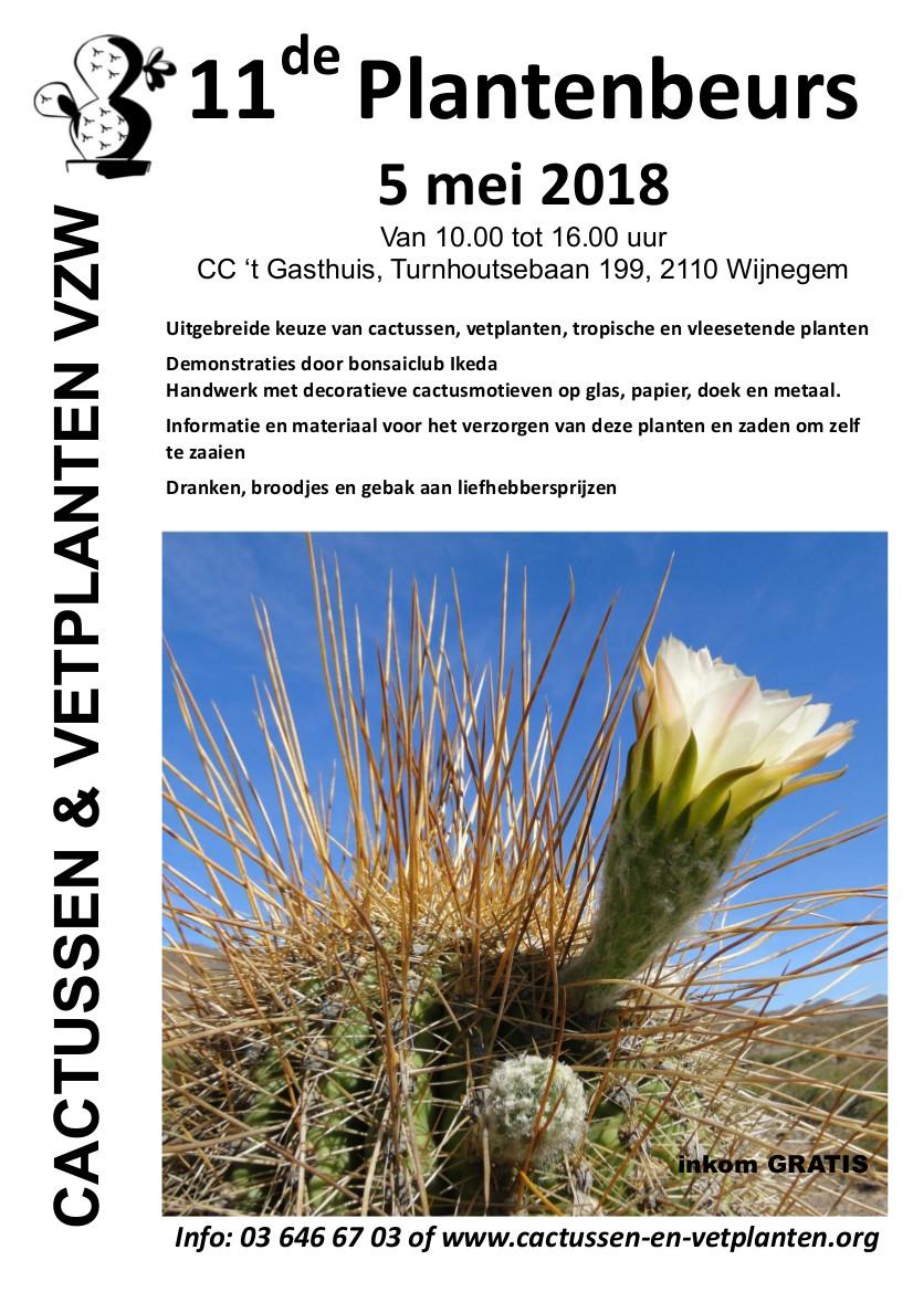 5 Mei: Beurs Voor Cactussen En Vetplanten In Wijnegen (België)