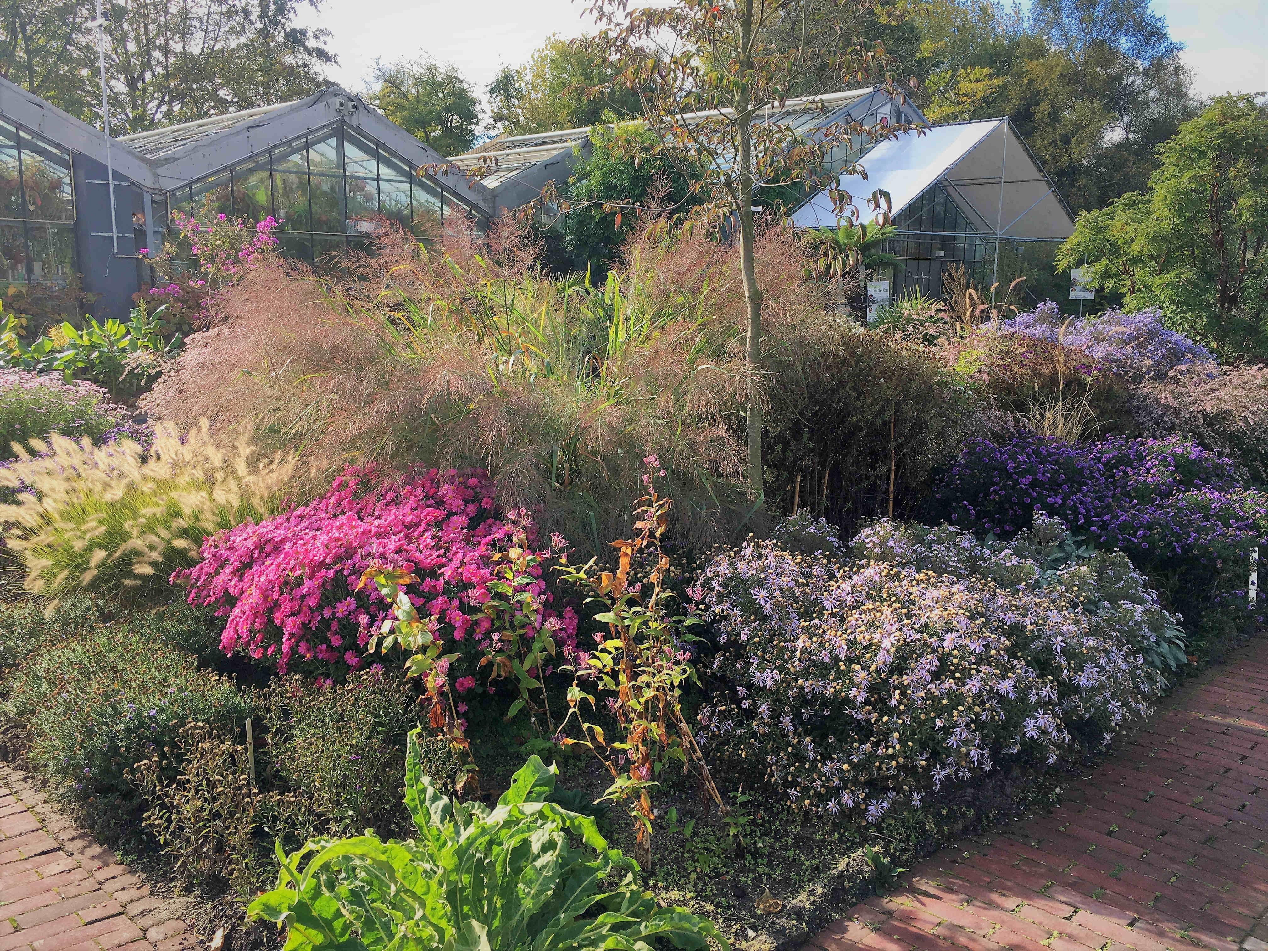14 En 15 September: Open Monumentendagen In De Botanische Tuin Zuidas